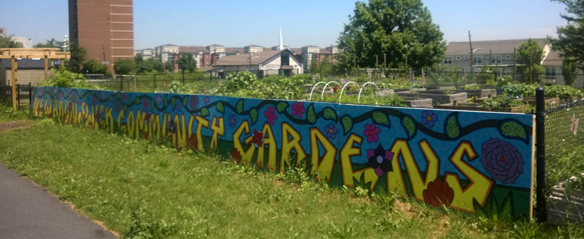 Photo: New Brunswick Shiloh Community Garden.