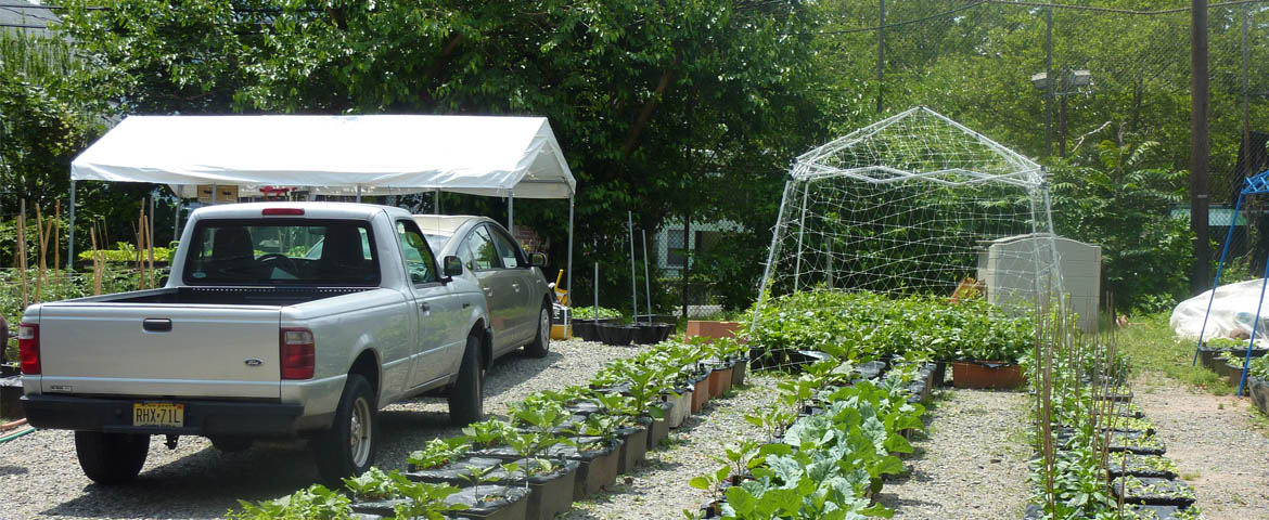 Photo: Newark Garden State Urban Farm.